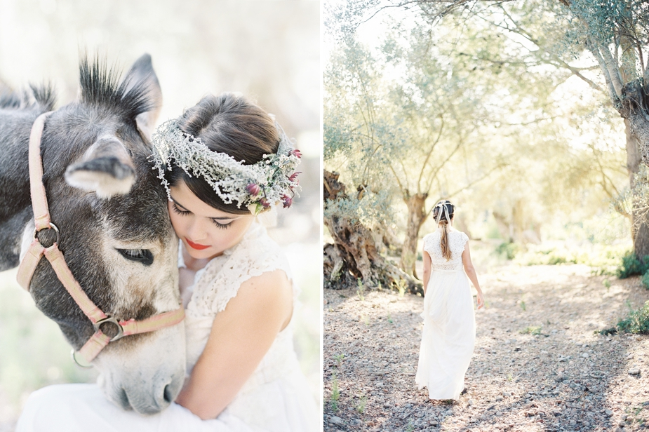 bridal photos in olive grove with cute donkey | Squaresville Studios