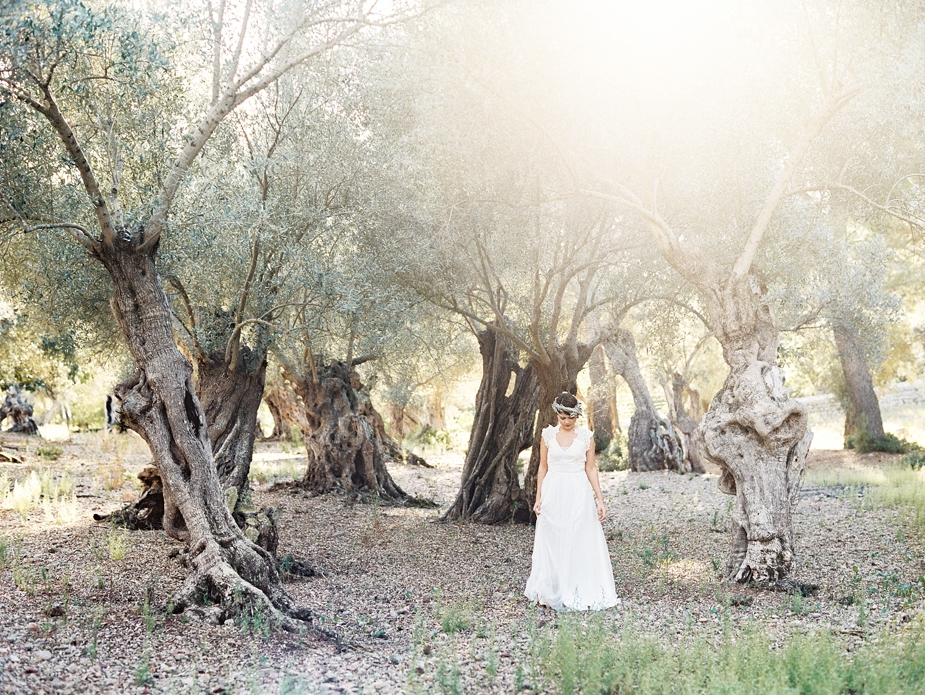 bridal photos in olive grove | Squaresville Studios